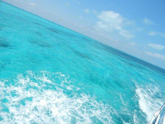 Garrafon Natural Reef Park : MAR EM ISLA MUJERES