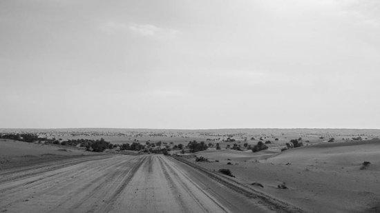 Al Maha, A Luxury Collection Desert Resort & Spa : Anfahrt durch das Wüstenreservat