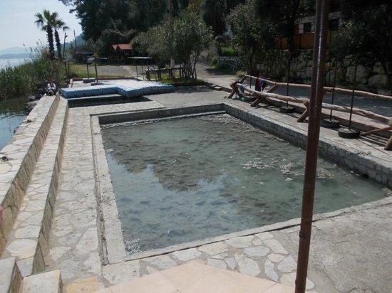 Pineta Park: mud baths
