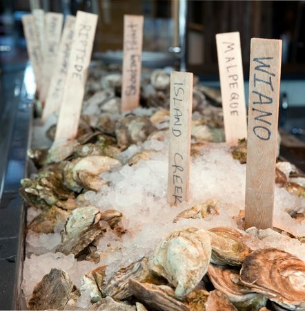 Ryleigh's Oyster : Serving the Widest, Freshest Selection of Raw Oysters on the Ice Daily