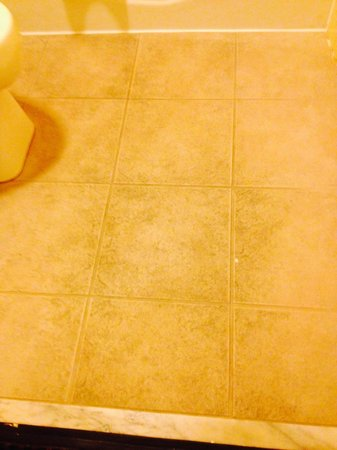 Days Inn Orlando Convention Center/International Drive : dirty bathroom floor