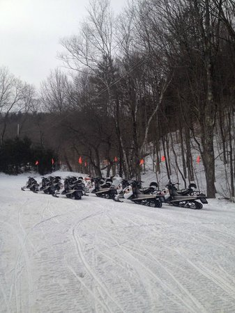 Killington Snowmobile Tours : the fleet