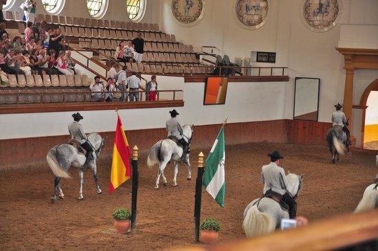 Fundación Real Escuela Andaluza del Arte Ecuestre : danza ecuestre