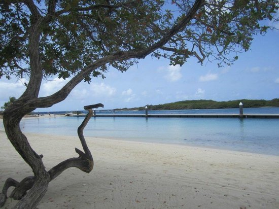 Santa Barbara Beach & Golf Resort, Curacao: Beach