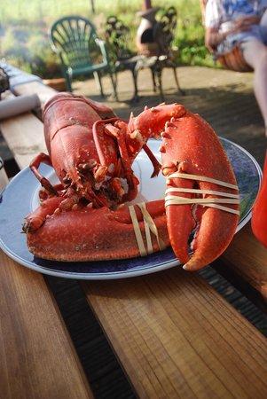 Filbeys Bistro: Fresh local seafood