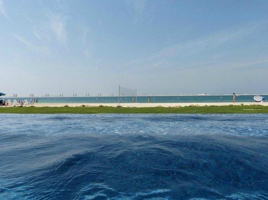 JA Palm Tree Court: Pool