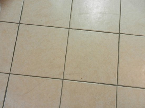 Emerald Isle Resort and Condominiums: Dirty Kitchen Floor