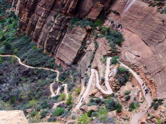 Canyon Overlook Trail: Trail