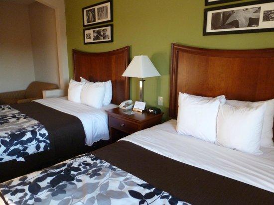 Sleep Inn and Suites : Camas comodísimas