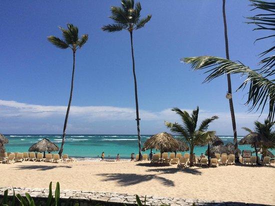 Majestic Elegance Punta Cana : beach!