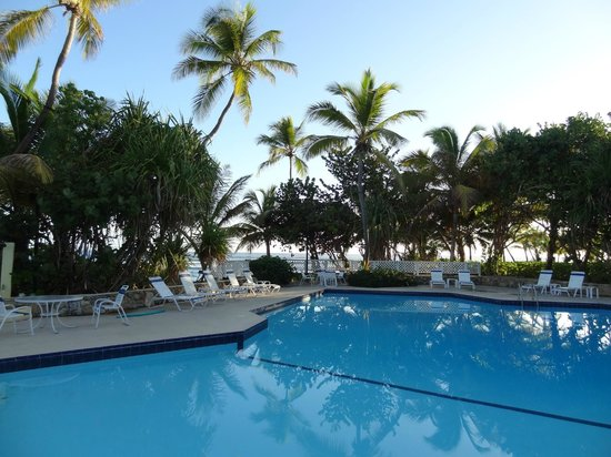 The Palms at Pelican Cove: Great pool!