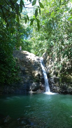 TikiVillas Rainforest Lodge: Local waterfall