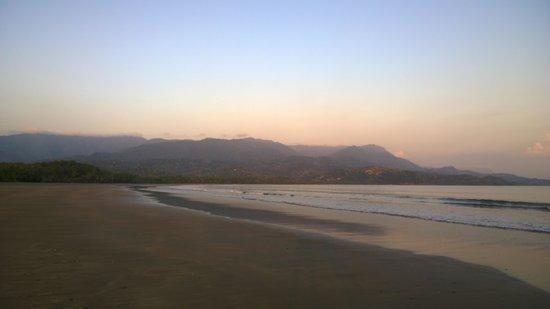 TikiVillas Rainforest Lodge & Spa : Low tide at 'whale-tail' beach