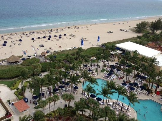 Fort Lauderdale Marriott Harbor Beach Resort & Spa : a great view
