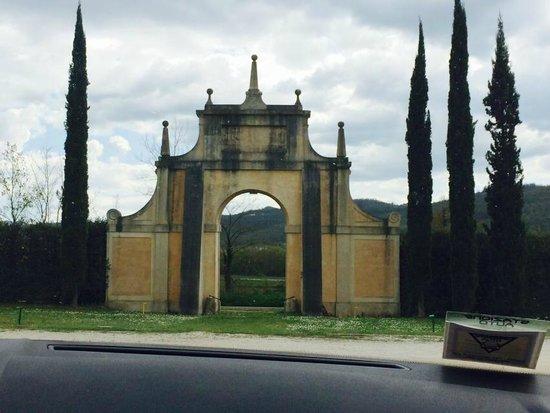 Il Mantova del Lago: INGRESSO RISOTANTE