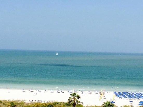 Marco Beach Ocean Resort : View from Room 1201