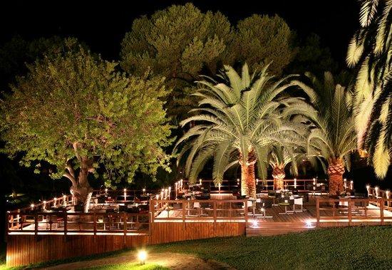 Don Carlos Leisure Resort & Spa: GARDEN