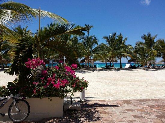 Weare Cadaques Bayahibe Hotel: Plage de l'hôtel