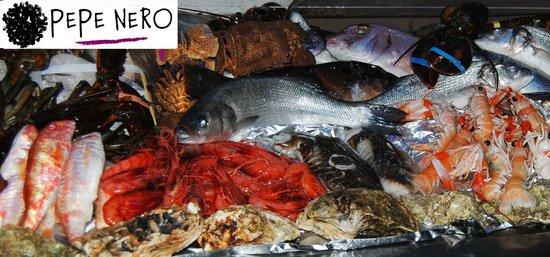 Ristorante Pepe Nero : Il pescato del giorno