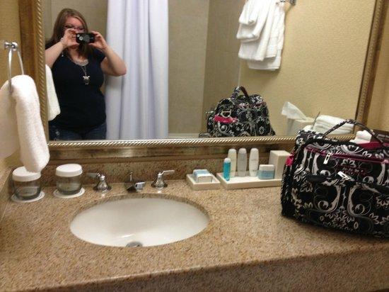 Omni Charlotte Hotel: bathroom