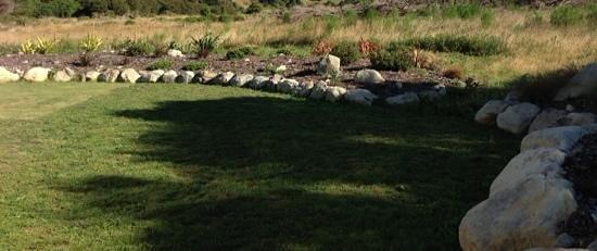 Manakau Lodge: lawn