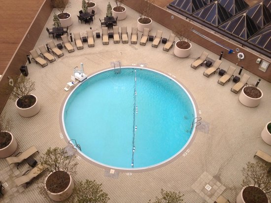 Omni Charlotte Hotel: pool from room