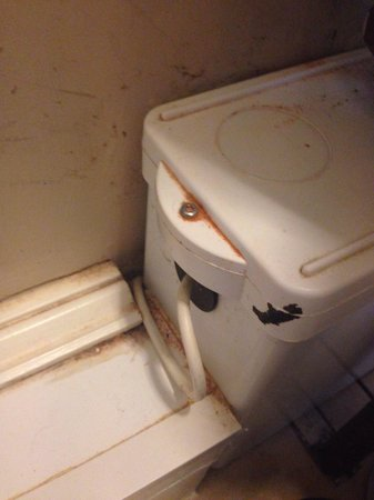 Wilton Guest House: Incredibly noisy toilet and not clean. Toilet seat broken