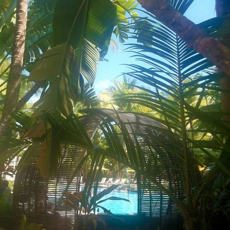 The Inn at Key West: Beautiful pool area