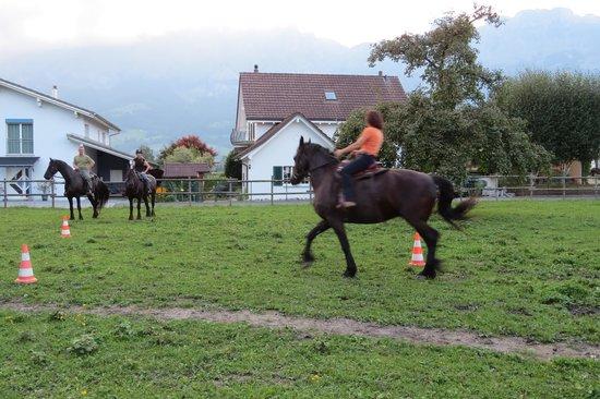 Haag, Schweiz: The owner working her horse behind the B&B