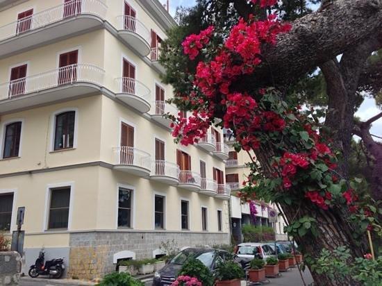 Hotel la Bussola: Front area