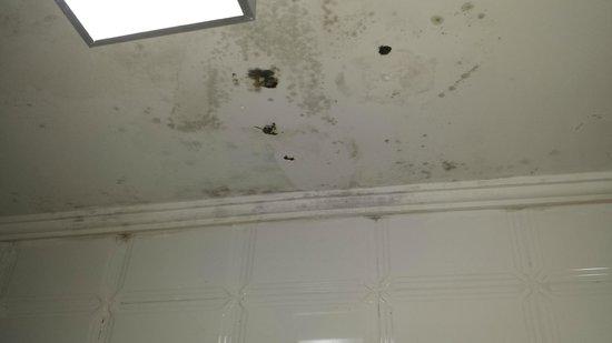 Hotel Imperador: Mofo no teto do banheiro. Quarto 45
