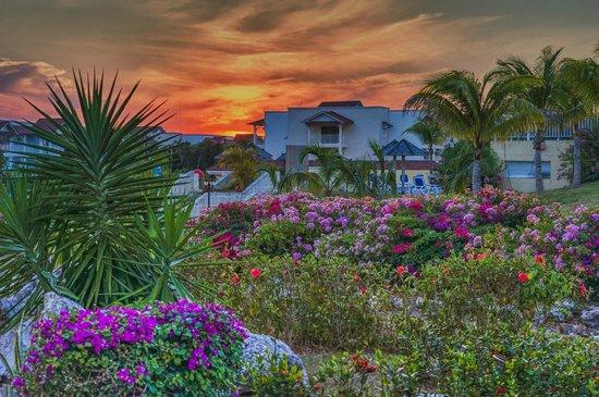 Sunset at Memories Flamenco Beach Resort
