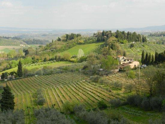 Tours of Pisa : Valle del Chianti