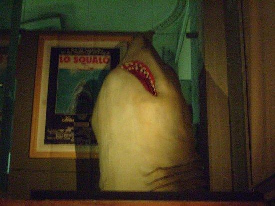 Mole Antonelliana: der Hai im Museum