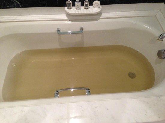 The Ritz-Carlton, Doha: Brown water bath anyone?