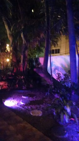 Casa Del Caribe Inn: garden area outside room lit up at night