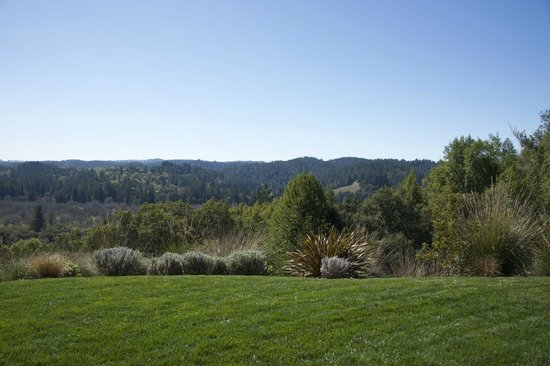 Gary Farrell Winery: Views From The Patio