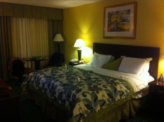 Wyndham Lake Buena Vista Disney Springs Resort Area: Muito bom!