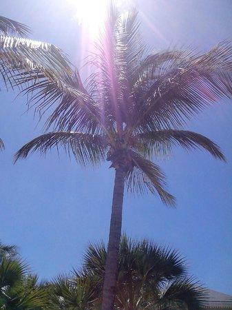 Club Med Columbus Isle : Dépaysement