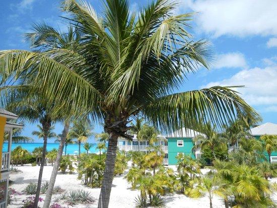 Club Med Columbus Isle : Vue depuis la chambre