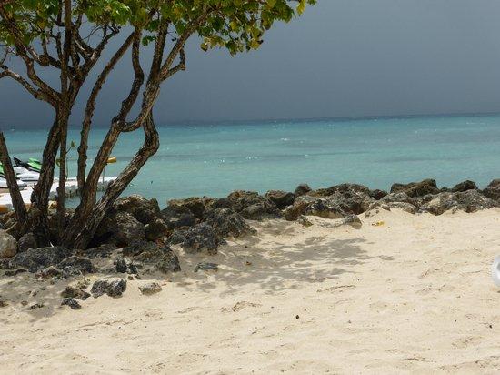 La Créole Beach Hôtel & Spa : plage