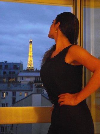 ibis Paris Tour Eiffel Cambronne 15ème: Nossa vista.