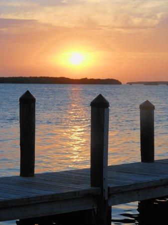 Islamorada Fish Company : Amazing sunset!