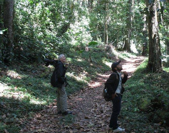 Finca Lerida: birding with Cesar (right)