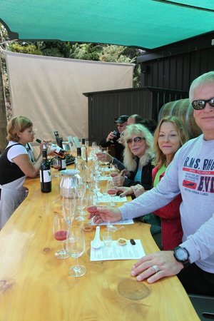Peacock Sky Vineyard: Food and Wine pairing with Connie Festa - Owner