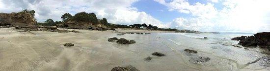 Tawharanui Regional Park: pristine beaches
