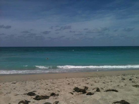 John D. MacArthur Beach State Park: perfect beach