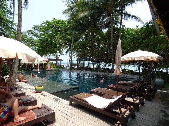 Chaweng Garden Beach Resort: Piscina