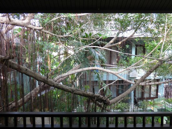 Chaweng Garden Beach Resort: Vista camera