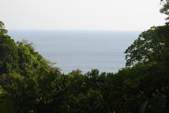 El Remanso Lodge: View from La Vainilla